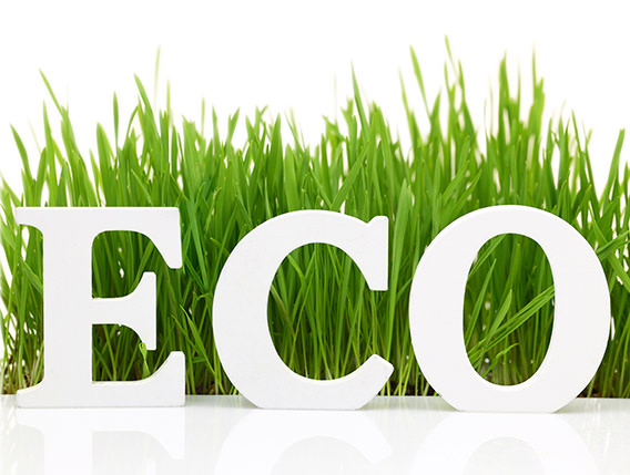 productos ecologicos ecosanum