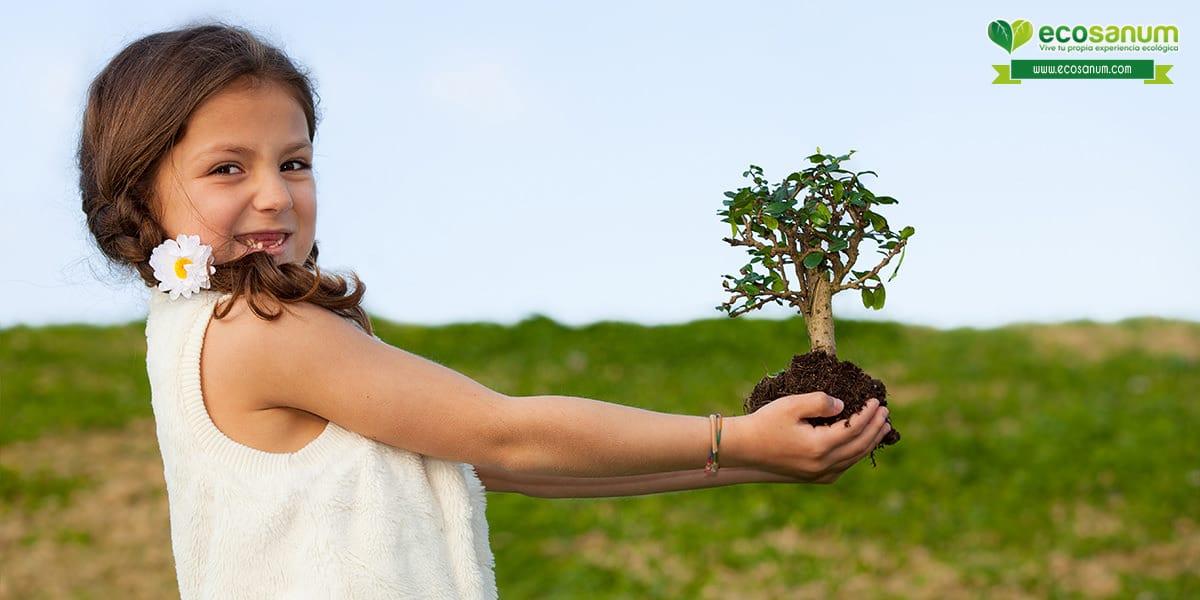 habitos ecologicos actividades aire libre