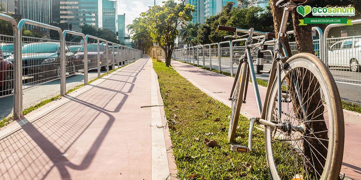 habitos ecologicos bicicleta