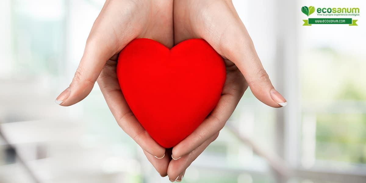 beneficios aceite de coco organico controla colesterol cuida corazon