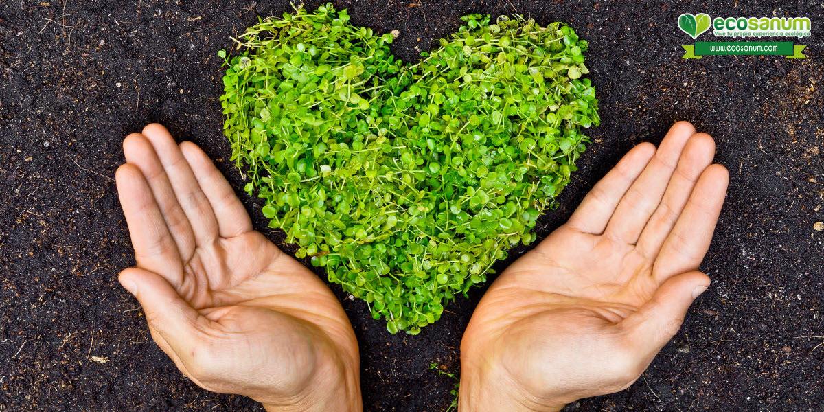 como diferenciar comprar productos ecologicos organicos naturales