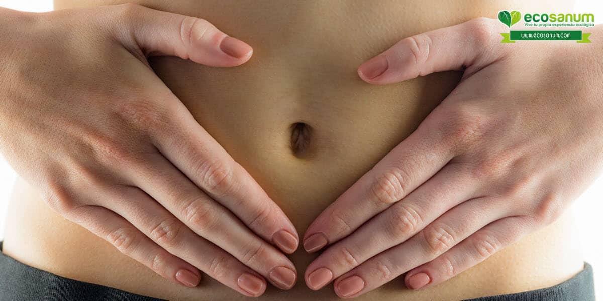 ventajas beneficios avena ecológica digestion estreñimiento