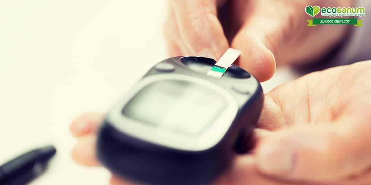 ventajas beneficios avena ecológica nivel azucar sangre
